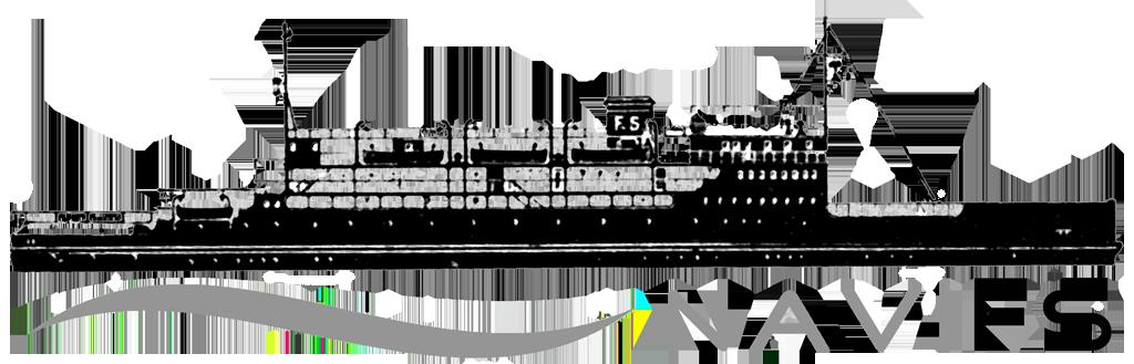 NAVI FS logo